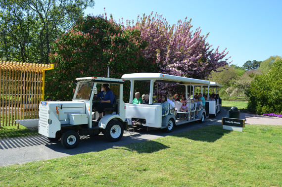 Norfolk-Botanical-Garden-Tram-Ride